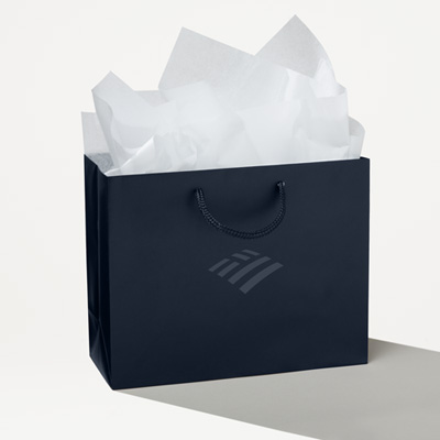 Flagscape Gift Bag Set