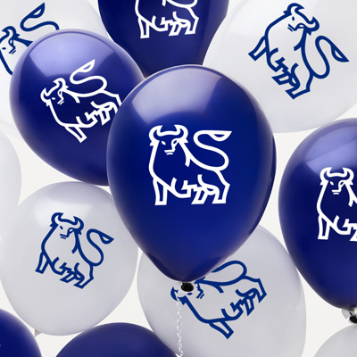 Bull Latex Balloons - 48 Pack