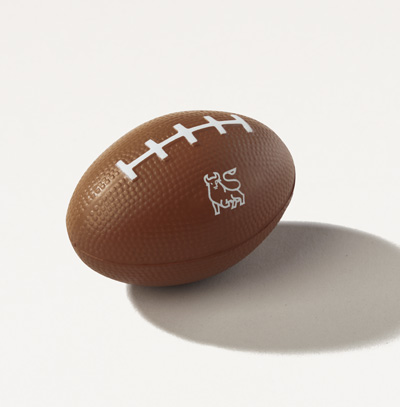 Bull Football Squishy Ball