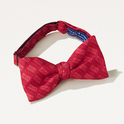 Bull Vineyard Vines® Bow Tie