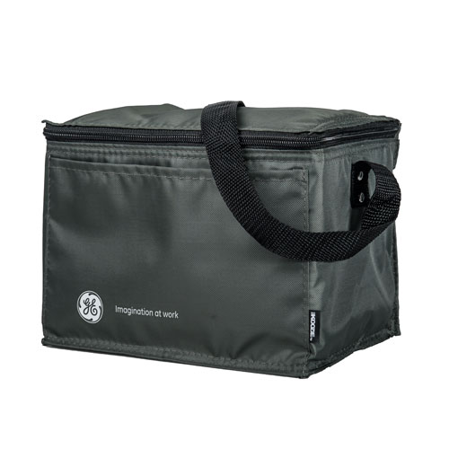 Small Insulated Cooler