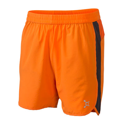 Mesh Panel Training Short