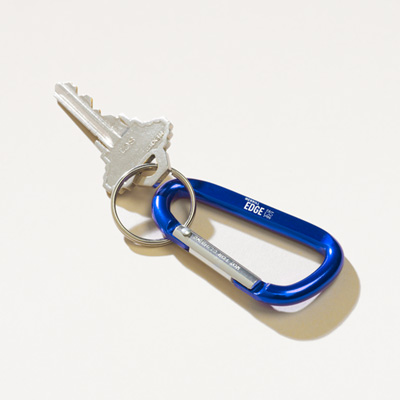 Merrill Edge Carabiner Key Chain