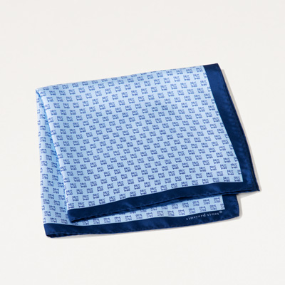 Bull Vineyard Vines® Pocket Square