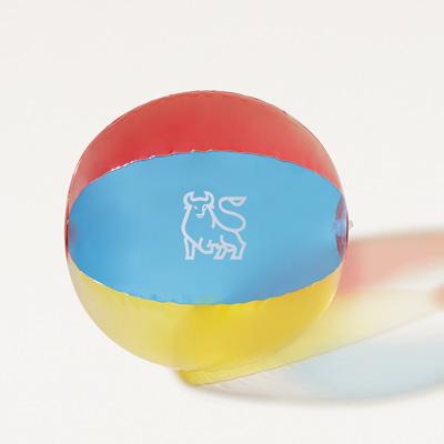 Bull Beach Ball