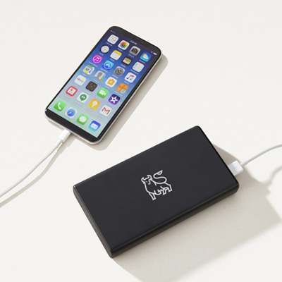 Bull Mophie® 20800 Charger
